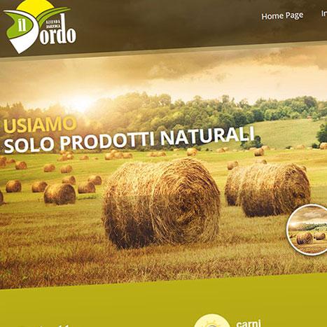 Creazione sito ecommerce il dordo