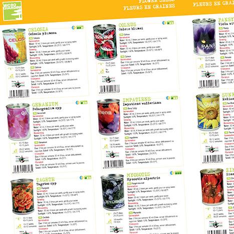 Realizzazione catalogo microgiardini